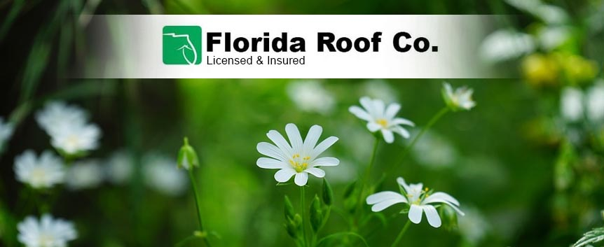 Spring Roofing Discounts Jacksonville Florida