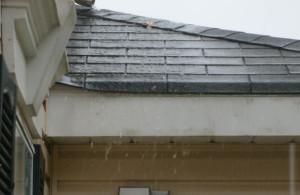 Jacksonville Fl Roofing Repairs